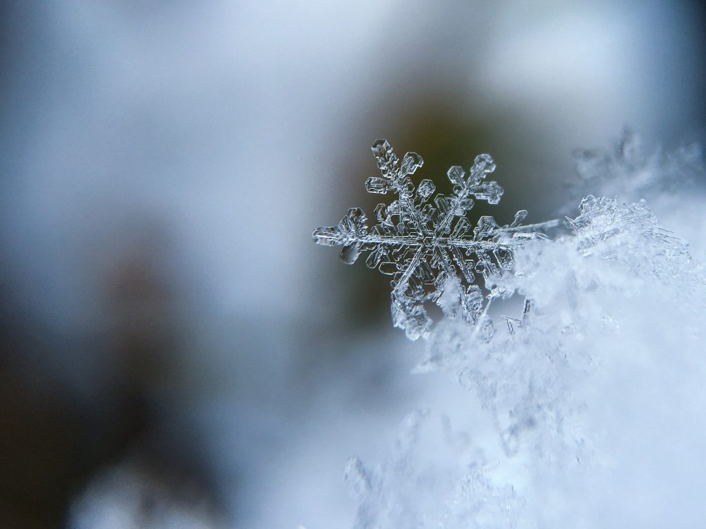 凍結するね!
